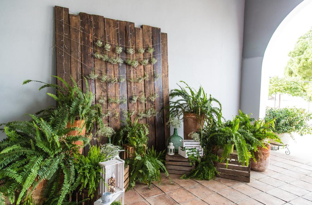 دکوراسیون داخلی و خلاقیت با چوب طبیعی